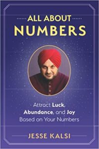 All About Numbers book by Jesse Kalsi